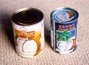coco-milk-cans-2-brands.jpg